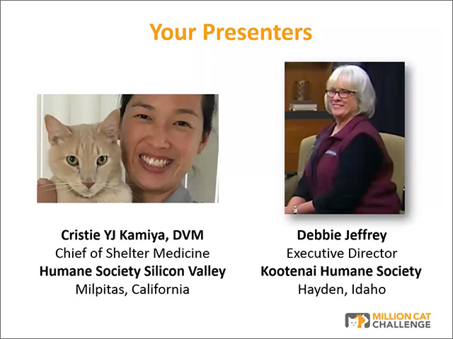 Cat Portals webinar presenters Kamiya and Jeffrey