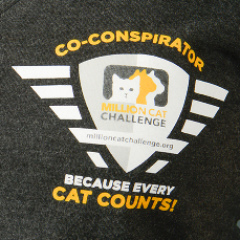 Badge on Million Cat Challenge t-shirt