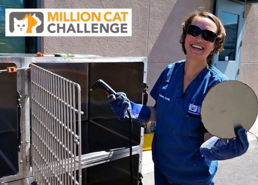 Dr. Cindy Karsten portalizes cat cages