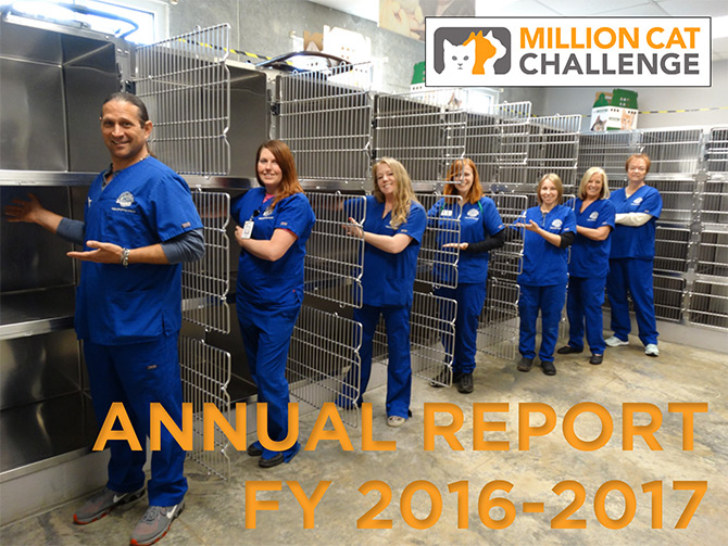 Million Cat Challenge Annual Report FY16-17 cover